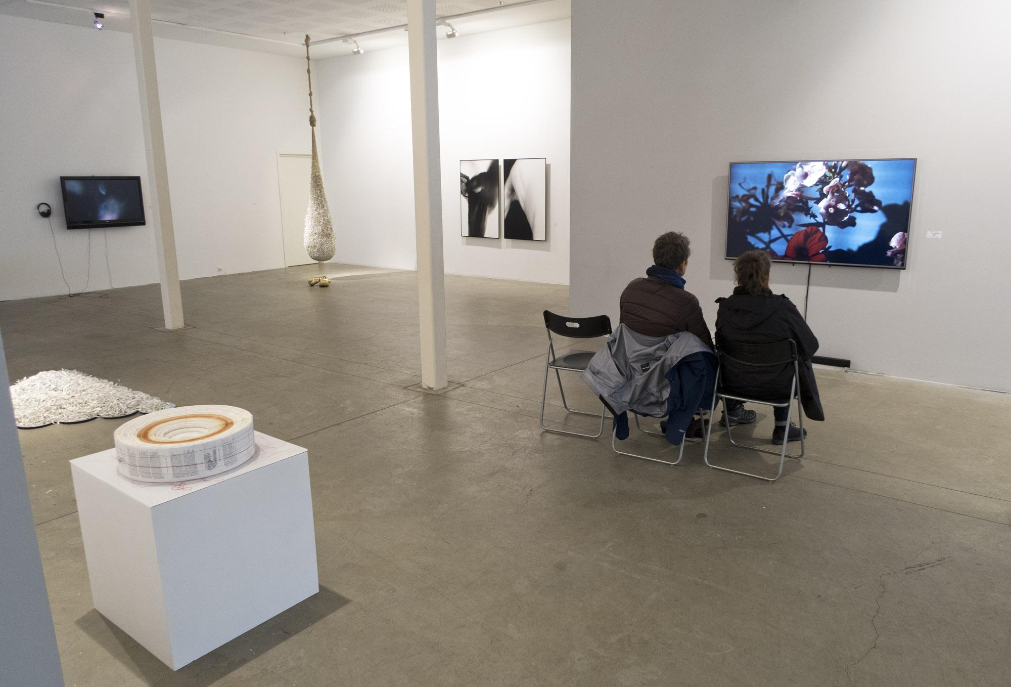 2017 from exhibition Galleri S.E