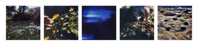 2019 self portrait Vestlandet (Polaroids 1980s)
